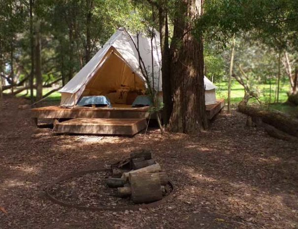 refugio-glamping-confort-bosque-01